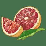 СК-СО-2 Экстракт Грeйпфрут